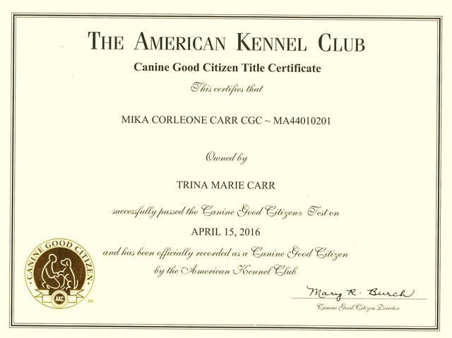 Certifications Archive - Dog Trainer, Redding, CA | Confident K9 ...